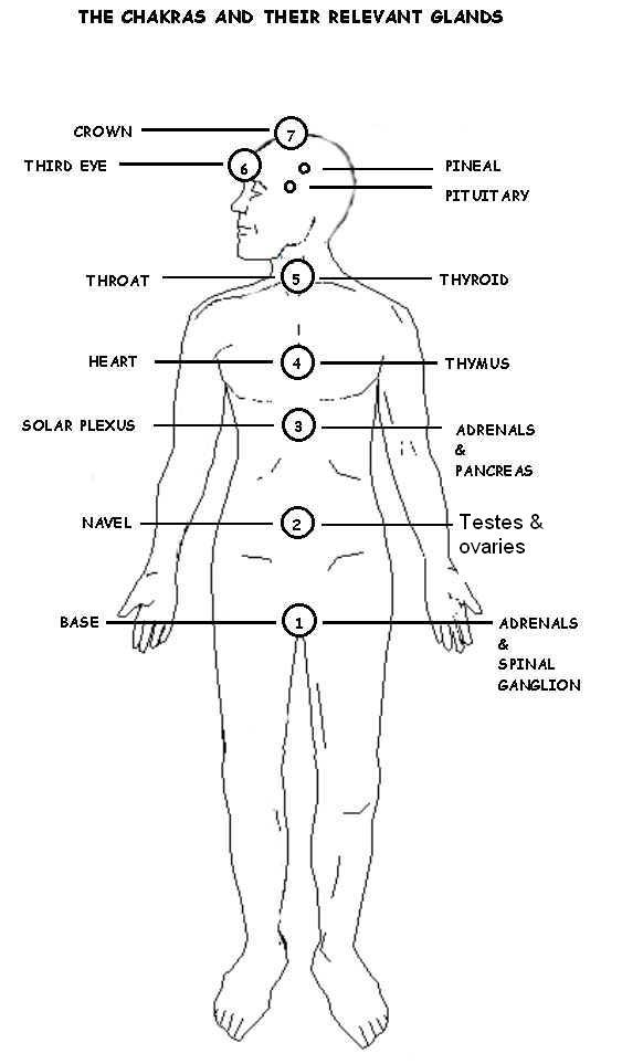 reiki used for chakras and glands